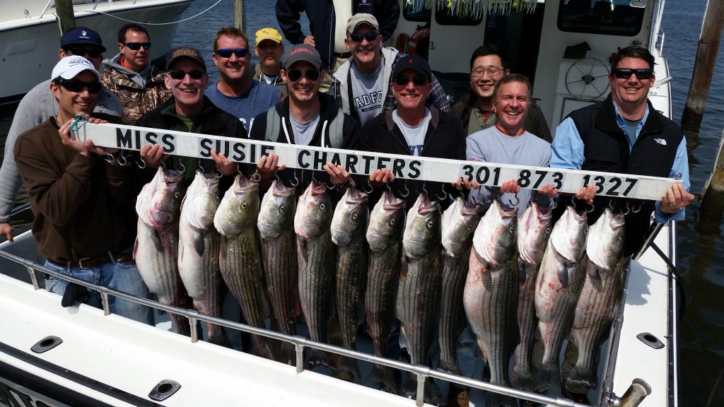 charter-fishing-arnold-md-near-annapolis