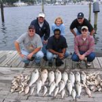 different types of fish in the Chesapeake Bay