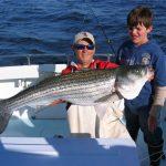 big rockfish striper caught on Chesapeake Bay fishing charter