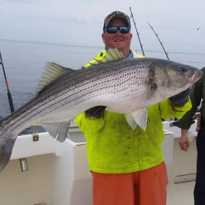 chesapeake-charter-captain-steve-holding-a-big-fish