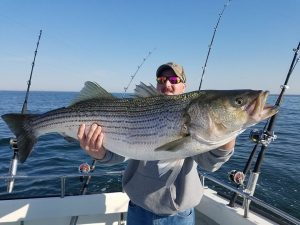 charter-fisherman-holding-enormous-fish-caught-on-chesapeake-bay
