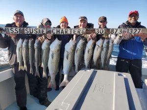 Best-Live-lining-rockfish-charter-fishing-chesapeake-bay