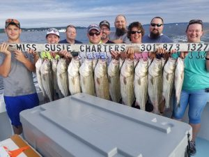 Chesapeake Bay Rockfish Charter 2021 fishing season Maryland