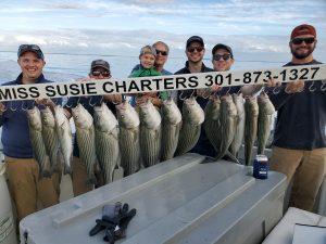 Best Chesapeake Bay Fishing Charter Miss Susie Charters